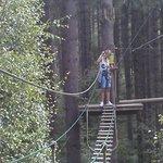 Swinging thru the trees
