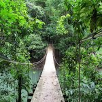 A hanging bridge to the beach and more scenic sights. Just go for a walk.  Enjoy.