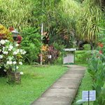 A gentle path leading to the beauty of Villas Rio Mar, Dominical, CR