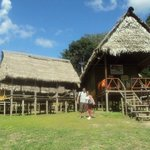 lodge Pirahna