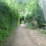 typical greenway bike path