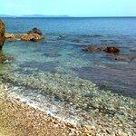 spiaggia TOPINETTI