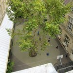 the schoolyard as seen from the 5th floor