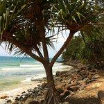 Une vue de la plage