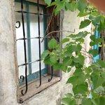 Window on a casa