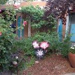 Garden area outside a casa