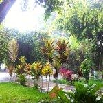 The garden at Casa Lola.