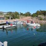 Boating activity in the marina