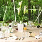 Elegant table settings for our outdoor reception