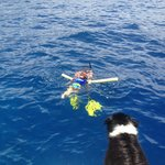 Dylan snorkeling
