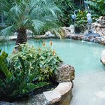 Award Winning Pool with Spa