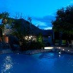 Backyard Pool and waterfall