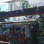 Bocas Blended Foto