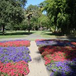 Expansive grounds and flower beds in Capital Park