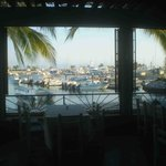 Marina view from Oso's