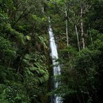 Manu waterfalls