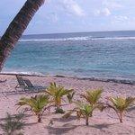 Beachfront view at The Edgewater resort, Rarotonga