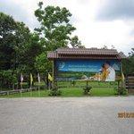 公園とプミポン国王夫妻