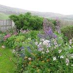 Beautiful garden at Vadsdal