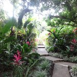 The path leading to our room