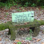 Jungle trail sign