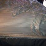 Short sheets