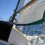 Sailing on Aura