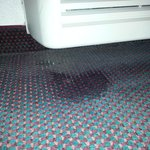 leaking air conditioning soaked carpet