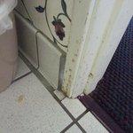nasty bathroom