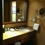Fancy bathroom!