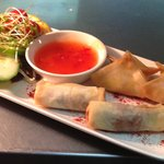 Starter - Duck Spring Rolls and Mango & Brie Parcels
