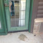 Patio door - a pile of grass clippings and cigarette butts, with hornet nests and cobwebs.