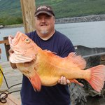 Huge early season yelloweye rockfish