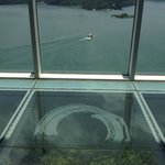 View from the 11th floor observatory - glass floor