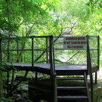 Brugess Falls