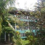 La façade du Tamarind's tree!