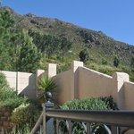 Garden - Mountain View