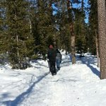 winter trail walk in lapland