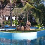 Lion swimming pool