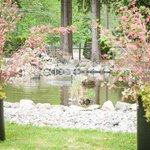 Foto de Chilliwack Riverfront Sanctuary
