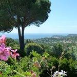Φωτογραφία: Villa Port Sud