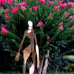 Scupture and Crepe Myrtles