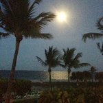 Tropic Seas Moon Rise