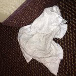 Dirty washcloth found in shower