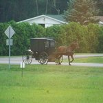 Amazing views of traditional Amish folk