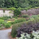 the Walled Garden (June 2013)