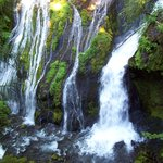 Panther Creek Falls - 15 min. drive from cabin