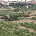 Blick aus den Olivenhainen auf die Finca