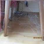 Our cobweb in our room.