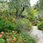 Garten zum Genießen